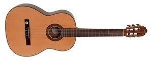 Klassikgitarre Pro Arte GC 210 A 4/4 Groesse